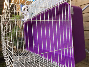 Small -medium animal cage