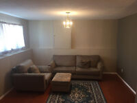 Bright & spacious basement for rent - Utilities and Wifi incl.