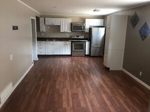 Renovated 2 bedroom basement apartment