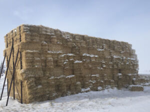 Straw Square Bales