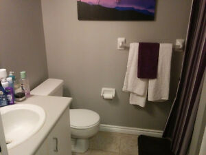 2 Bedroom 2 Bathroom Condo for rent London Ontario image 3