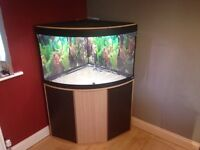 Fluval Venezia 190 aquarium, stand with extras!
