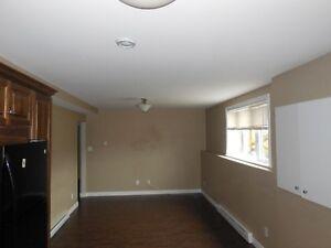2 Bedroom basement apartment St. John's Newfoundland image 7