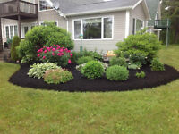 DECA Landscaping & Lawn Care
