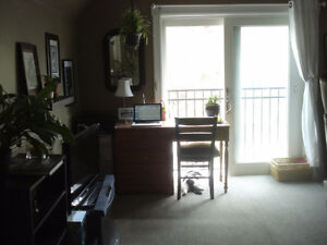Charming 1 Bedroom in the Heart of Downtown - Available July 1st