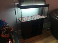 180 litres fish tank with stand