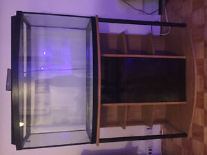 46 Gallon bow front tank and stand $250 neg