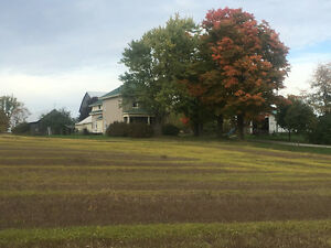 Farm, 105 acres, 4 bdrm house, barn, sheds