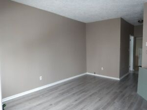 newly renovated 2 bebroom apt downtown