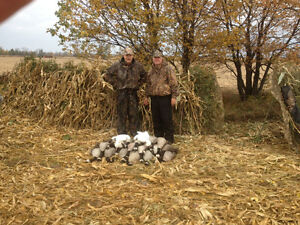 Guided Duck and Goose Hunts Cornwall Ontario image 7