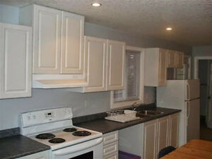 ***$510 - SEE CAMPUS FROM YOUR ROOM!!! Kitchener / Waterloo Kitchener Area image 2
