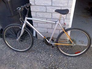 Vélo en bonne condition générale