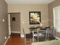 138 Patteson 2 bedroom lower executive furnished unit