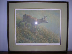 Robert Bateman L.E. Print Mourning Dew- Roe Deer Kingston Kingston Area image 1