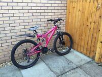 Vamp silverfox bike