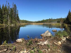Très grands terrains au bord d'un petit lac Saguenay Saguenay-Lac-Saint-Jean image 4