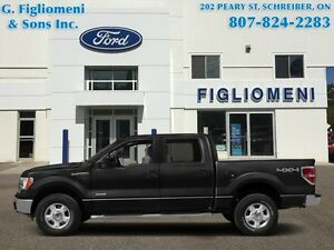 2014 Ford F-150 FX4  - Leather Seats - POWER MOONROOF - Cooled S