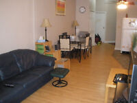 Newly decorated large apartment with 10 foot ceilings