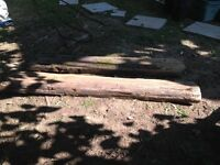 Two cedar slabs