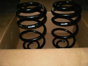 Pair of Coil Springs