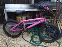 Blank ammo pink BMX