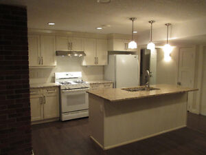 NEWLY RENO'D EXECUTIVE PARKVIEW 2BR LOWER SUITE-A MUST SEE