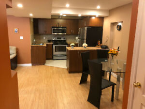 1 bedroom furnished basement in Richmond hill