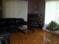 SPLIT ENTRY 3 BEDROOM, 2 BATH NAPAN PRICED TO SELL!