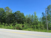 Vacant Lot for Sale, Part Lot 9 County Road 18, Sydenham Twp