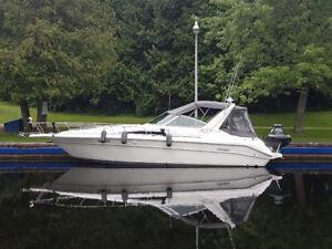 Sea Ray 33 Diesel