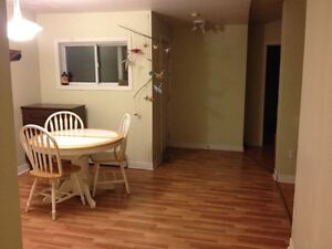 Roommate wanted in 3 bedroom apartment