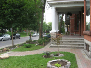Centretown - Bright 1 bed with deck