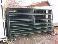 5 1/2 X10 Medium Corral Panel