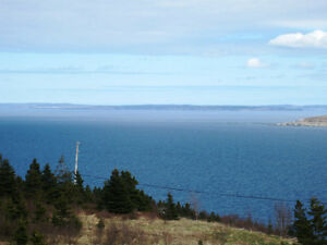 Anthonys Rd - Spaniards Bay - MLS 1101128/1101127 St. John's Newfoundland image 4