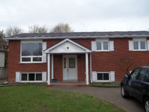 1 BEDROOM FULLY FURNISHED SUITABLE FOR IR MILITARY CLOSE TO BASE