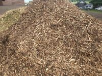 FREE Woodchip / Mulch / Chippings