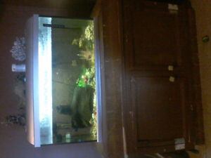 30 Gallon fish tank and accessories