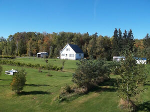 Sunrise Vineyard, Northern Nova Scotia   72 acres