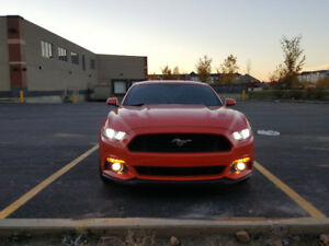 2015 Ford Mustang GT, LOW KM!!!, LOWEST PRICE!!!
