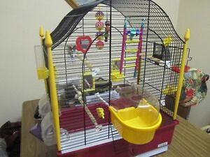 Beautiful, Colourful Bird Cage
