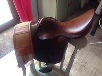 Falcon horse saddle