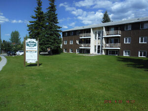 Very large 1,2 and 3 Bedroom apartments!! In Hinton, AB