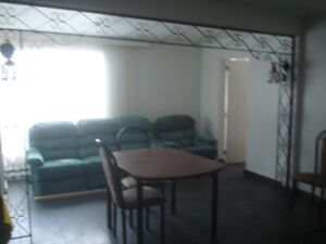Nice one bedroom apartment 400 and you pay power or 650  all inc