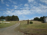56.69 Acres of Commercial Blueberry Land/Possible Subdivision