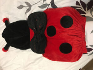Brand New Lady Bug Costume 6-9 months