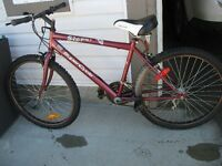 Supercycle Storm 15 speed mountain bike