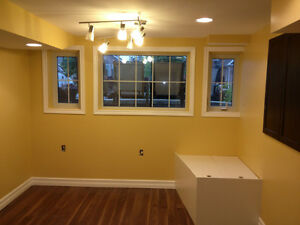 Professional Contractor and Handyman Services Belleville Belleville Area image 2