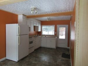 One bedroom Cottage on the North Branch of the LaHave river