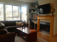 Kits 1 Bed + Den and Huge Patio Available Jan. 1st