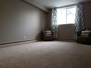 Newly renovated 1 bedroom condo for rent
